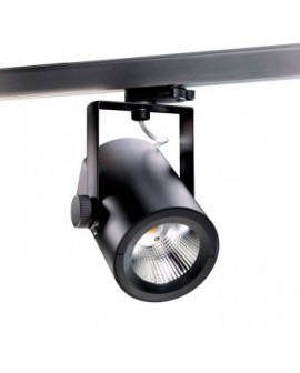 RAY MINI LED 30W SPOT